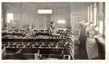 Interior View of Northville Hatchery, Clark Boxes in  ForegroundClark-Williamson Boxes in...
