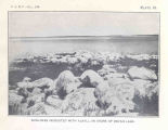 Devils Lake, North DakotaBowlders Incrusted with Alkali, On Shore of Devils Lake
