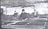 Interior View of a State Salmon Hatchery