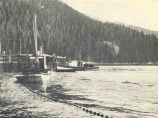 Salmon Trap and Purse Seine