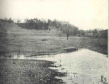 Habitat of the Toad and Peeper: a Shallow Meadow Pond Which Dries Up in Midsummer