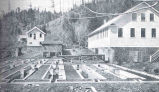Hatchery and Feeding Ponds, Duckabush (Wash.) Station