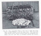 Box suspended from a raft near a clam flat from May 15 until October 15 of the same year. The...