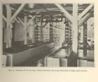 Interior of Put in Bay (Ohio) hatchery showing whitefish troughs and battery