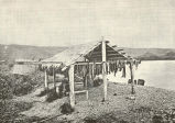 Method of Protecting Salmon from the Rain, While Drying, By Means of a Grass-Thatched Roof,...