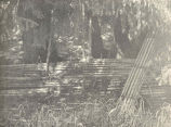 Old Barrier Fences and Indian Fish-Traps, Karta Bay