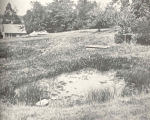 Photograph showing dirt pond no.11 at Craig Brook