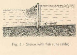 Sluice with Fish Runs (Side)