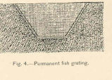 Permanent Fish Grating