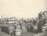 Herring Industry of Yarmouth, England