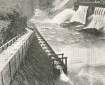 Installation of this fish ladder over the Dee Dam in the East Fork of Hood River will improve...