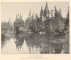 On the Beaver River. Before the Scenery Was Destroyed by the State Dam