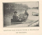 First Beaver Liberations by the State, April 1905 : Leaving Old Forge with a Boatload of Beavers