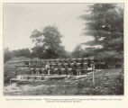Open-air salmon-rearing troughs. These troughs are used at the Craik Brook (Maine) hatchery for...