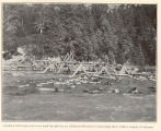 Alaskan fish traps and runs used by natives on Chilkoot Stream for obtaining their winter supply...