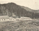 Government Hatchery at Yes Bay, Alaska
