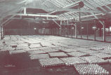Cooling Room. Cans are convened from retorts to cooling room, where each can receives its final...