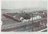 Birdseye View of the Apex Fish Company's Plant, Anacortes, Wash. This plant, owned by Lee...