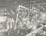 Fish Cutters at Bolscheretsk Cannery : Interior Views of Siberian Salmon Canneries, Operated by...