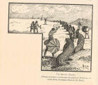 Sea-Lion Caravan(Natives driving a drove over the plain of Polavina, en route from Northeast Point...