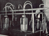Hatching equipment for shad and other semibuoyant eggs. Over the inner ends of the tubes which...