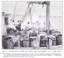 Inspecting crabs as they are delivered to a run boatThe inspector is seen standing at the left of...