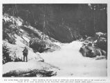 "Fry Creek Falls, near Kaslo""After catching all the trout we could use, from Kootenny Lake at..."