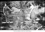 Man and woman logging, probably on the Olympic Peninsula