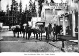 Loaded pack train in Forks