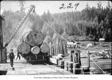 Goodyear Logging Company log dump at Clallam Bay