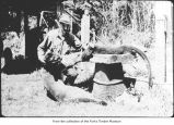 Floyd Thornton with dead cougars, probably on the Olympic Peninsula