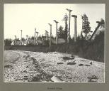 Tlingit totem poles and houses at the deserted Indian Village, Cape Fox, Alaska, July 1899.