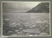 Drift ice in Disenchantment Bay, Alaska, June 1899.