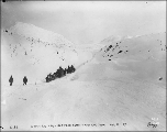 Klondikers with horse drawn sleds on the White Pass Trail between Summit and Log Cabin, British...
