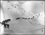 Packtrains ascending the trail to White Pass summit, Alaska, March 20, 1899.