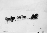 Dogsled team hauling two women, vicinity of Dawson, Yukon Territory, ca. 1898.