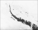 Line of Klondikers carrying supplies ascending Chilkoot Pass, Alaska, 1898.