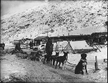 Ben Atwater and his dogsled team arriving at Bennett Lake from Circle City, Alaska with U.S. mail,...