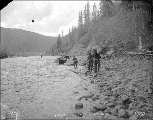 Four men hauling boat up the bank of the Klondike River, Yukon Territory, ca. 1898.