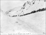 Klondikers with packtrains heading over White Pass, Alaska, March 24, 1899.