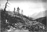 Chilkoot Trail showing Lindeman Lake in the distance, British Columbia, September 4, 1898