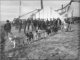 Dog team hauling cart with cask of water on the beach at Nome, Alaska, ca. 1900.