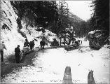 Klondikers with horse drawn sleds on the White Pass Trail, Alaska, 1898.