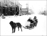 Dog hauling sled with two children, Skagway, Alaska, ca. 1898.