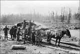 Horse and load tram car hauling a boat on the Canyon and White Horse Rapids Tramway Company,...