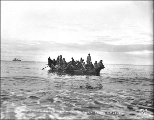 Eskimos returning in umiak to King Island after their yearly trading trips to Nome, ca. 1901.
