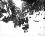 Klondikers with horse drawn sled and dogsled at Canyon, Chilkoot Trail, Alaska, 1897.