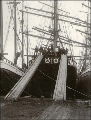 Loading lumber with chutes onto the deck of the sailing vessel SCHWARZENWALD, probably Port...
