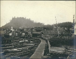 Dwellings and business establishments of Wrangell, Alaska, ca. 1900.