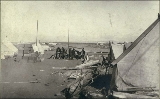 Men, tents, and supplies on the beach, Nome, Alaska, ca. 1900.